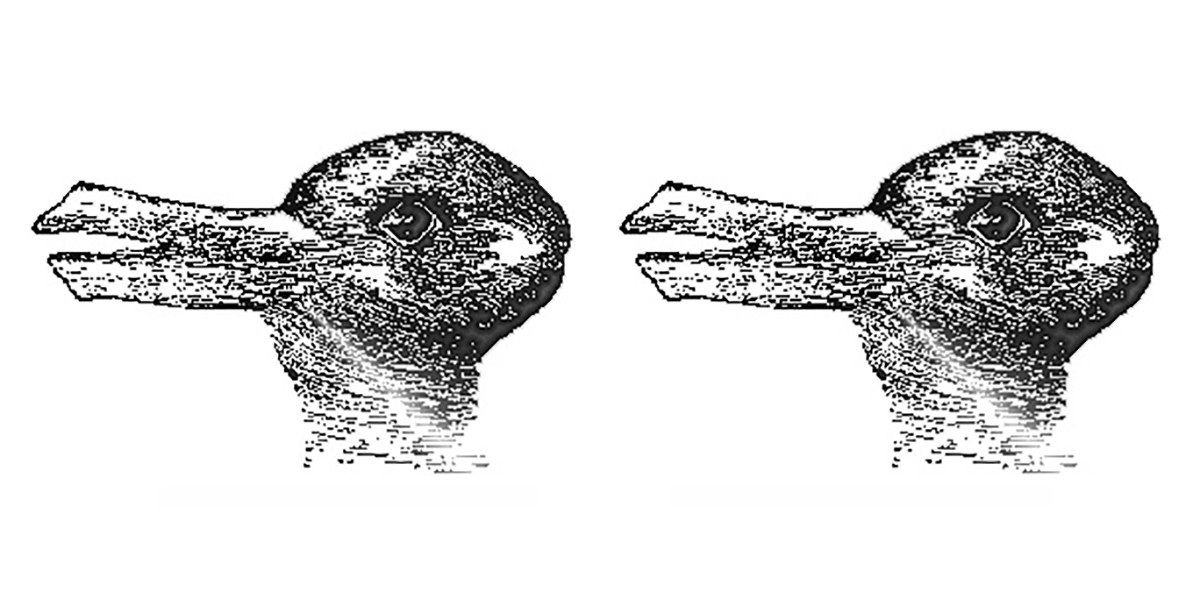 What do you see when you look at these images side by side—two ducks? Two rabbits? Or a duck and a rabbit?