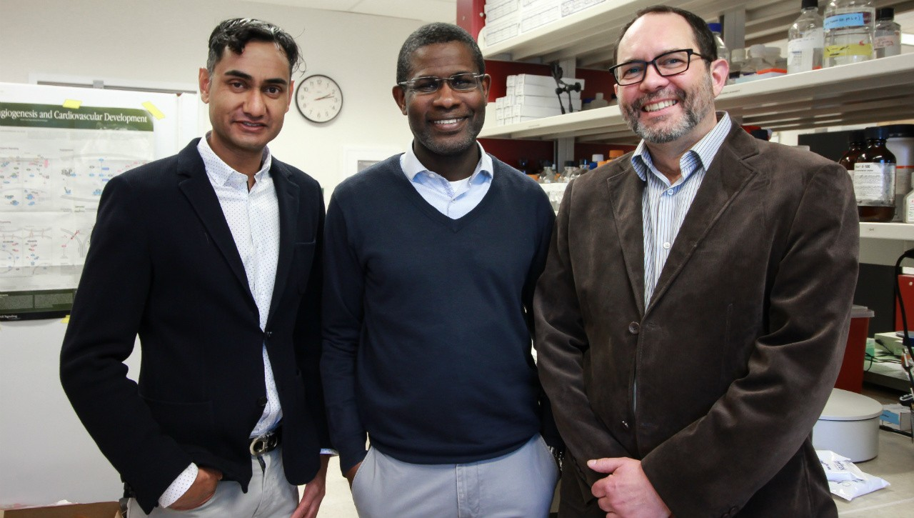 (From left) Surgery professors Khalid Ansari, Adetola Adesida and Martin Osswald engineered cartilage that can be grown from a patient's own cells and used for nasal reconstruction. (Photo: Melissa Fabrizio)