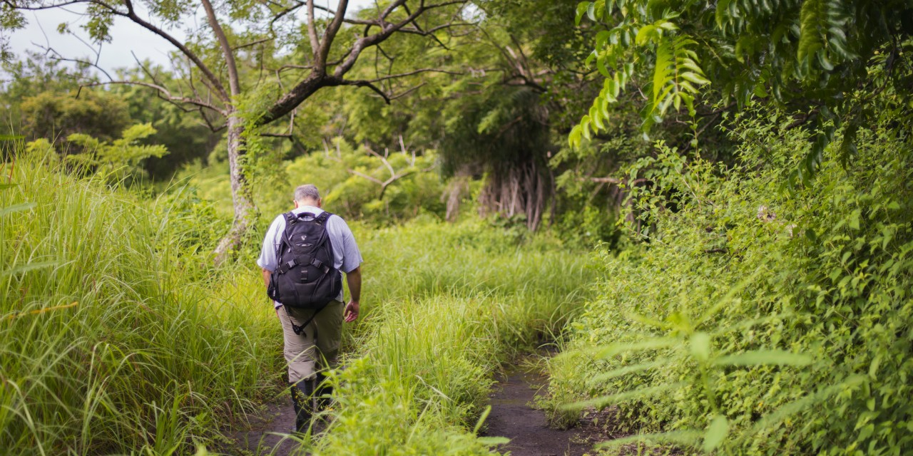 Arturo Sanchez-Azofeifa, UAlberta professor and principal scientist of the Santa Rosa National Park environmental monitoring supersite in Costa Rica, walks in the tropical dry forest near the site.