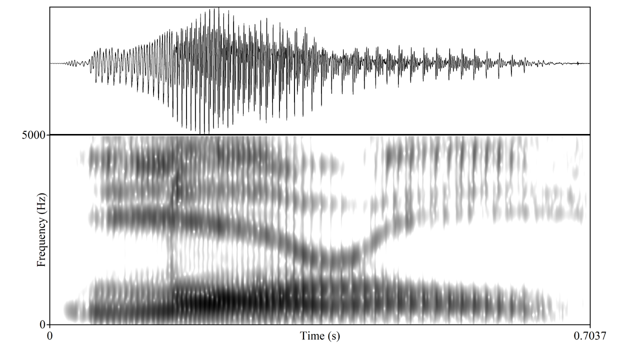 "University of Alberta linguists looked at the waveforms of the original ""Laurel"" sound clip (pictured) and the lower-quality version of the file making the rounds on Twitter. They found that the Twitter version contains lower frequencies that can mask higher ones, leading the brain of some listeners to fill in the hidden frequencies and interpret the word as ""Yanny."" (Image courtesy Ben Tucker)"