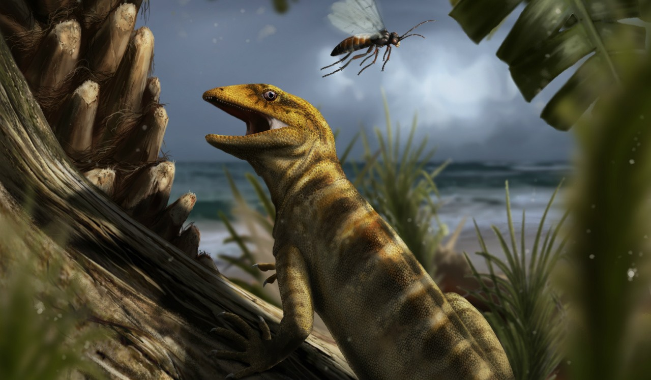 The fossil of Megachirella dates back 240 million years, making it the most ancient known ancestor of modern lizards and snakes. (Illustration: Davide Bonadonna)