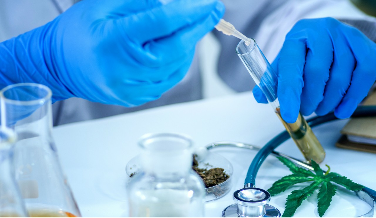 The CBD in medical cannabis is purported to have a wide range of health benefits, but there's little scientific evidence to back up the anecdotal hype, according to U of A experts. (Photo: Getty Images)