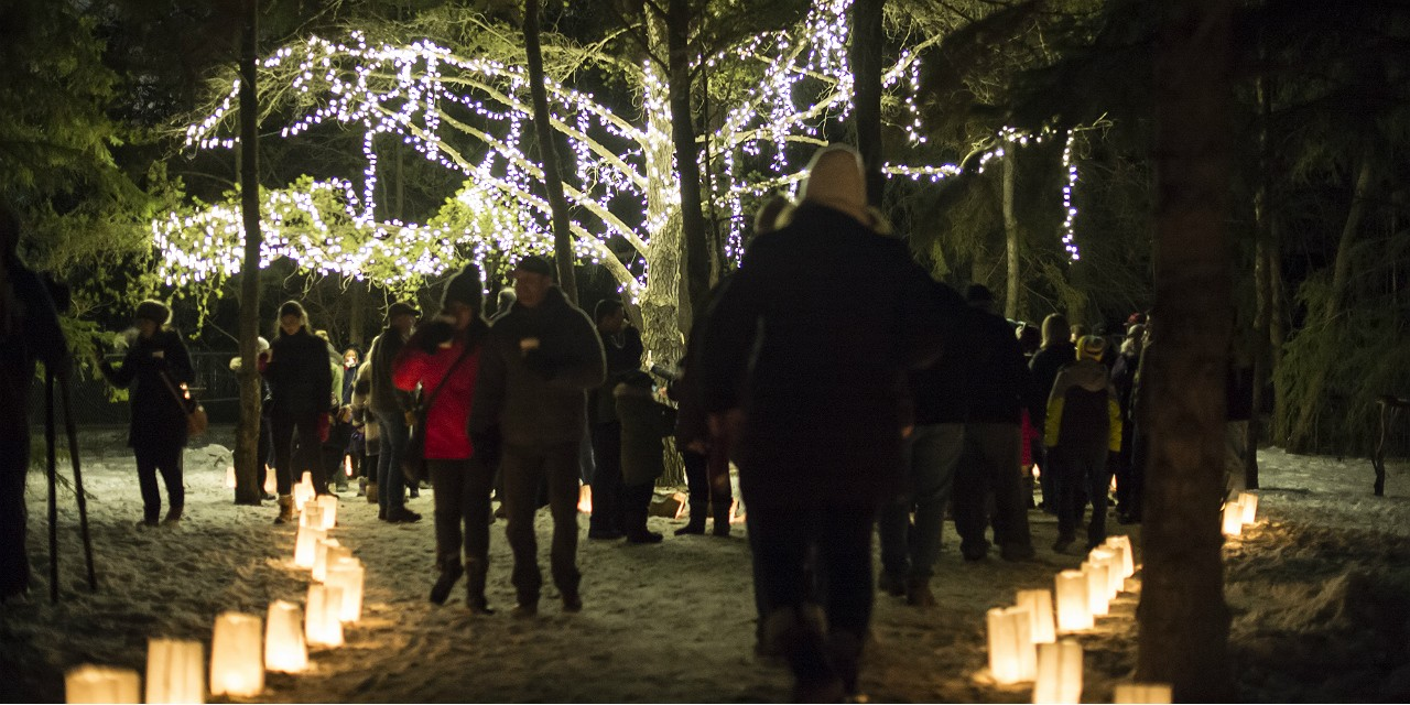 The Luminaria light festival at the U of A Botanic Garden has become a seasonal favourite, drawing more than 10,000 people each year. (Photo: Paul Swanson)