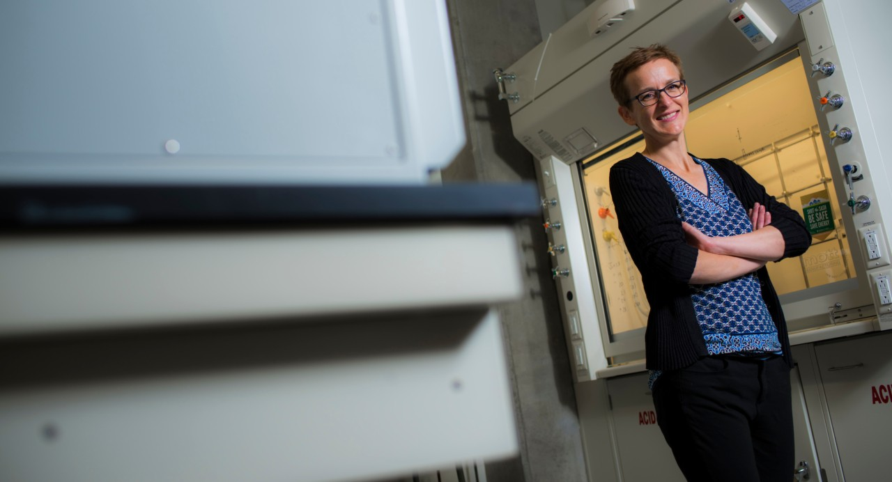 U of A chemists Jillian Buriak (pictured), Jonathan Veinot and their team found that nano-sized silicon particles overcome a limitation of using silicon in lithium ion batteries. The discovery could lead to a new generation of batteries with 10 times the capacity of current lithium ion batteries. (Photo: John Ulan)