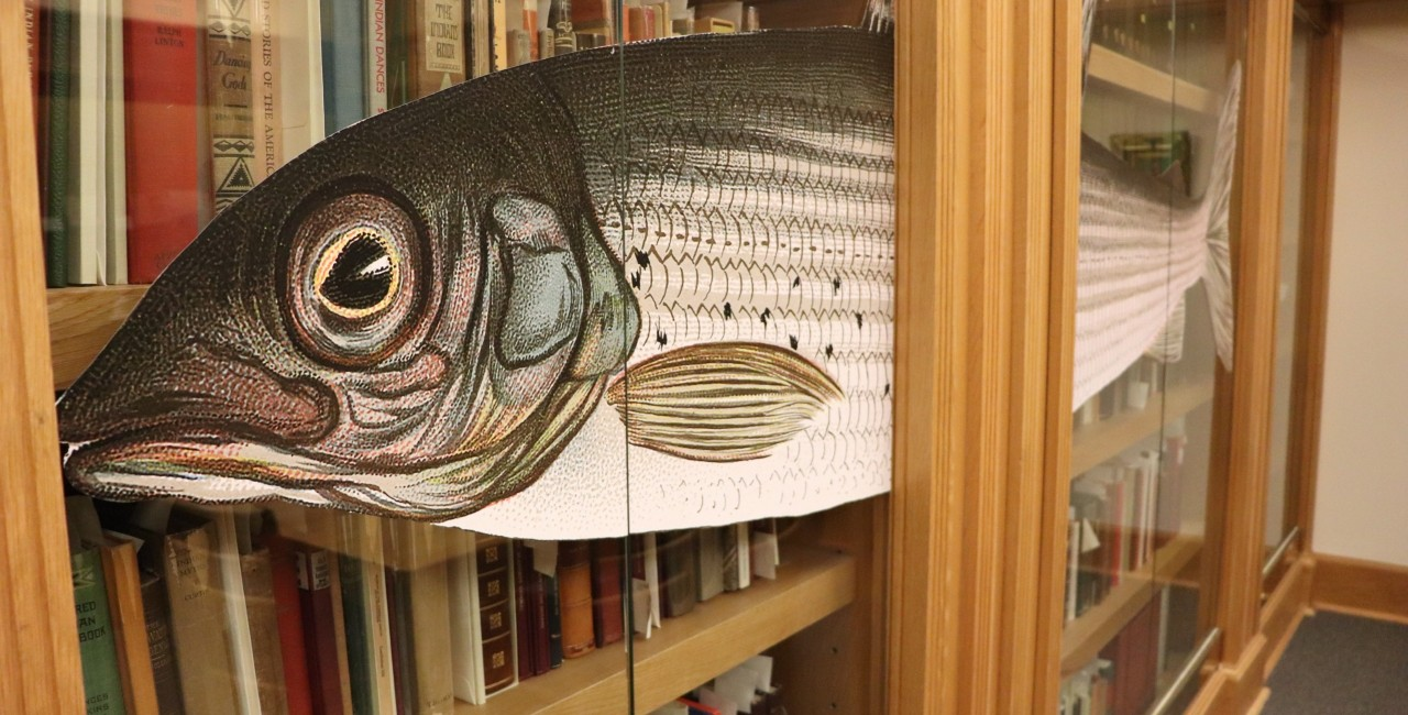 A new exhibit at the U of A's Bruce Peel Special Collections Library showcasing rare fishing books and memorabilia is the most popular exhibit in the library's history. (Photo courtesy of U of A Libraries)