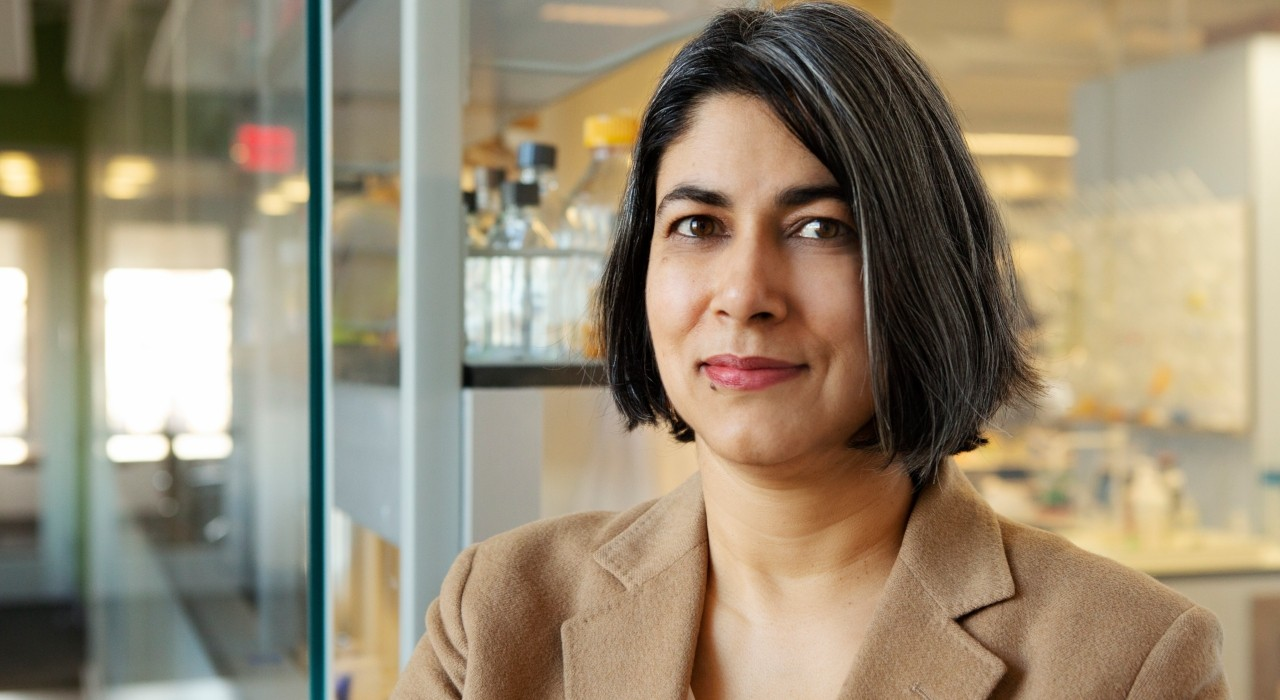 Lara Mahal, a leading researcher in how sugars are linked with human health and disease, will join the U of A as a Canada Excellence Research Chair. (Photo: Supplied)