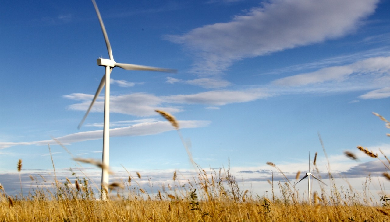 The Box Springs Wind Farm in Medicine Hat, Alta., is one of five case studies U of A researchers compiled to show how renewable energy projects can benefit rural communities in Canada. (Photo: Green Energy Futures)