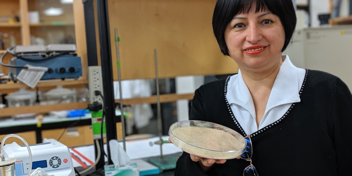 U of A researcher Marleny Saldaña in her lab with a sample of ground-up canola straw. Saldaña used the waste byproduct to create cellulose fibre that makes the biodegradable, plant-based cling wrap she's developing 12 times stronger. (Photo: Sean Townsend)