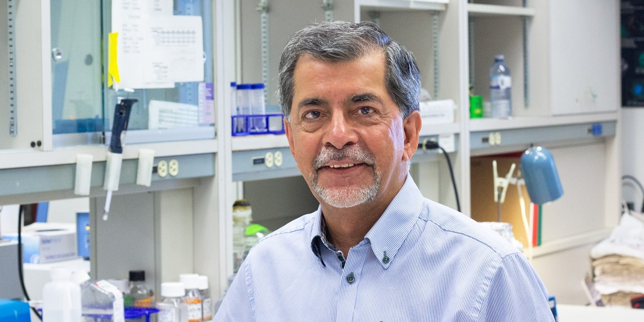 U of A neurologist Jack Jhamandas led a team that found a new treatment significantly improved memory in mice with Alzheimer's disease. The researchers are now developing a drug that could eventually be used to treat human patients. (Photo: Jordan Carson)