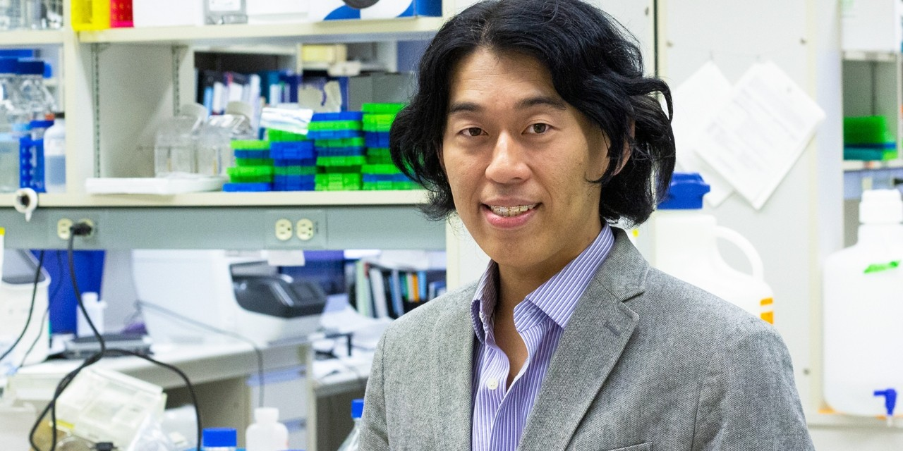 U of A medical geneticist Toshifumi Yokota is testing a new treatment for Duchenne muscular dystrophy that acts like a stitch to repair a genetic mutation in patients with the debilitating disease. (Photo: Jordan Carson)