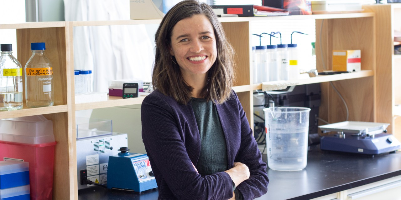 U of A pharmacologist Anna Taylor's recent research suggests that treatments focused on restoring healthy gut bacteria could help improve brain health and reduce the negative effects of conventional opioid treatments for chronic pain. (Photo: Jordan Carson)