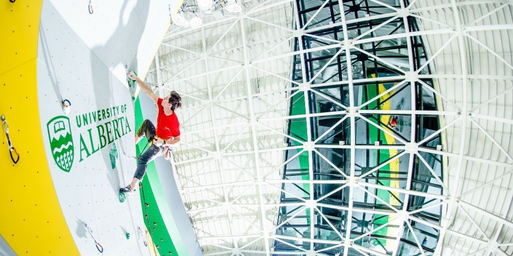 A climber scales the heights of the Wilson Climbing Centre in the Physical Activity and Wellness (PAW) Centre. A $10M donation from Dick and Carol Wilson helped make the PAW Centre a reality.