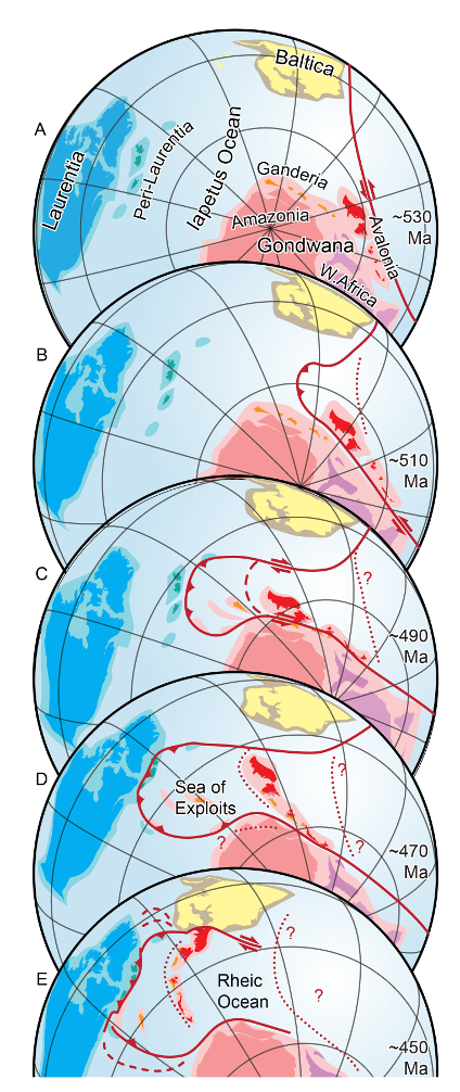 This graphic shows the possible geography of the Iapetus Ocean in a series of snapshots from the Cambrian Period (about 530 million years ago) until the Late Ordovician Period (about 450 million years ago). The continent Laurentia, which formed the core of modern North America, is shown in blue. Yellow colours represent Baltica, which became Scandinavia and Eastern Europe. Shades of pink and magenta represent parts of Gondwana, which was located over the South Pole in the Cambrian Period and included modern South America and Africa. The red and orange fragments are pieces of Gondwana that found their way into the Appalachian and Caledonide mountain ranges, including much of Atlantic Canada and portions of Great Britain and Ireland.