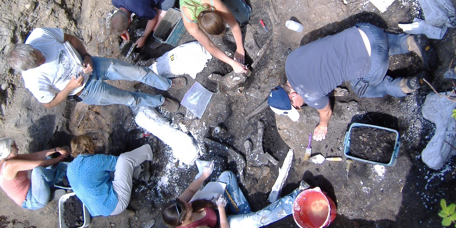 Phil Currie oversees the field school excavation at the Danek Bonebed in 2008. (Photo: Victoria Arbour)