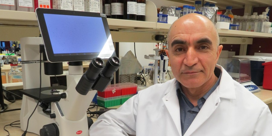 Shokrollah Elahi is lead author of a study that show an anti-inflammatory drug may prevent accelerated aging in HIV-infected individuals.
