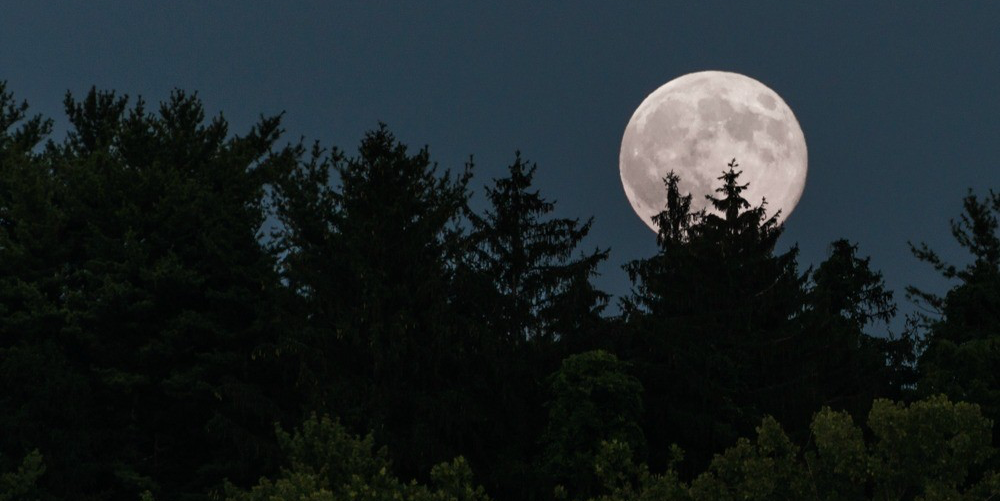 The best time to see the Dec. 13 supermoon is between 5 and 6 p.m., says UAlberta astrophysicist Sharon Morsink. (Photo: Jordan Confino via Flickr, CC BY-NC-ND 2.0)