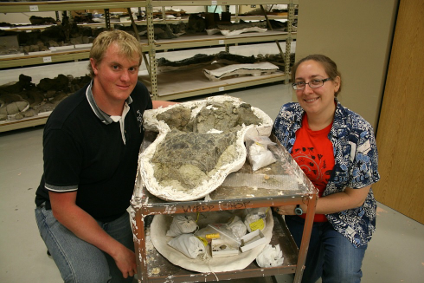 Michael Burns and Victoria Arbour at the New Mexico Museum of Natural History and Science, with the skull of Ziapelta sanjuanensis.
