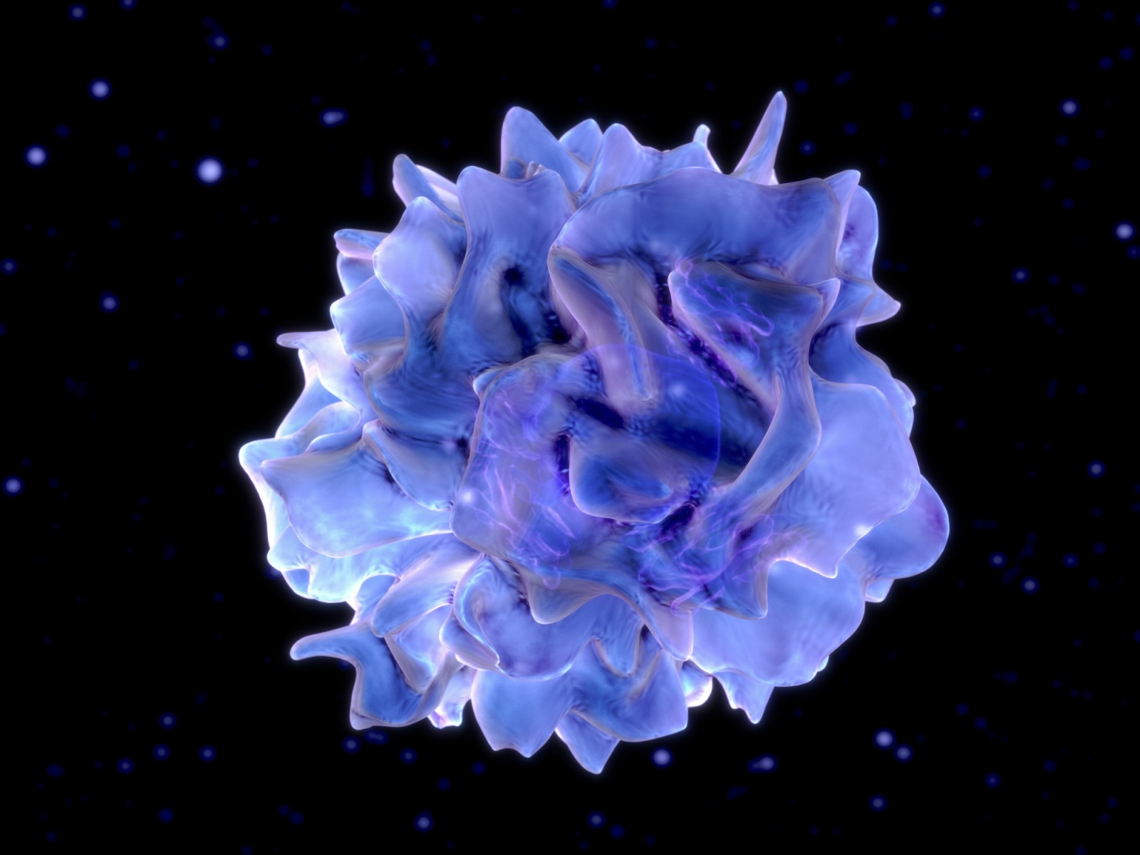 Computer illustration of dendritic cells, a component of the body's immune system. Illustration by Getty.