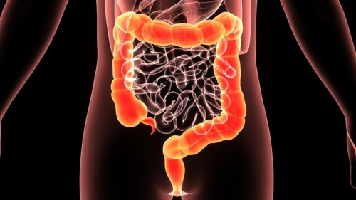 March is the Month to Get to the Bottom of Colorectal Cancer