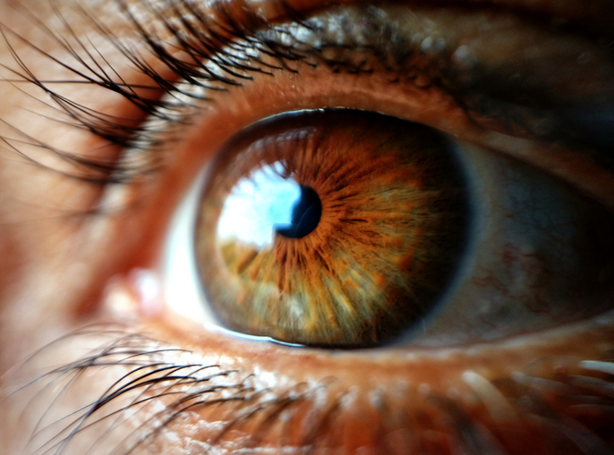 Do stem cells hold a potential treatment for retinitis pigmentosa? Photo by Getty.