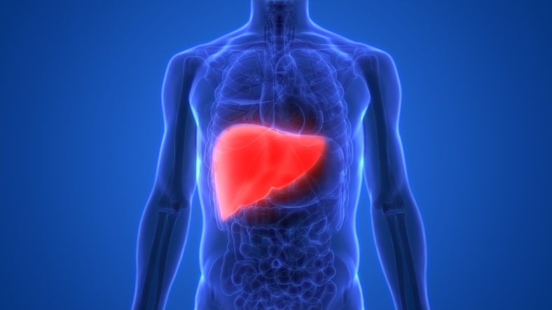 A Cedars-Sinai study examined the standard method for classifying patients on the waiting list for a liver transplant. Photo by Getty.