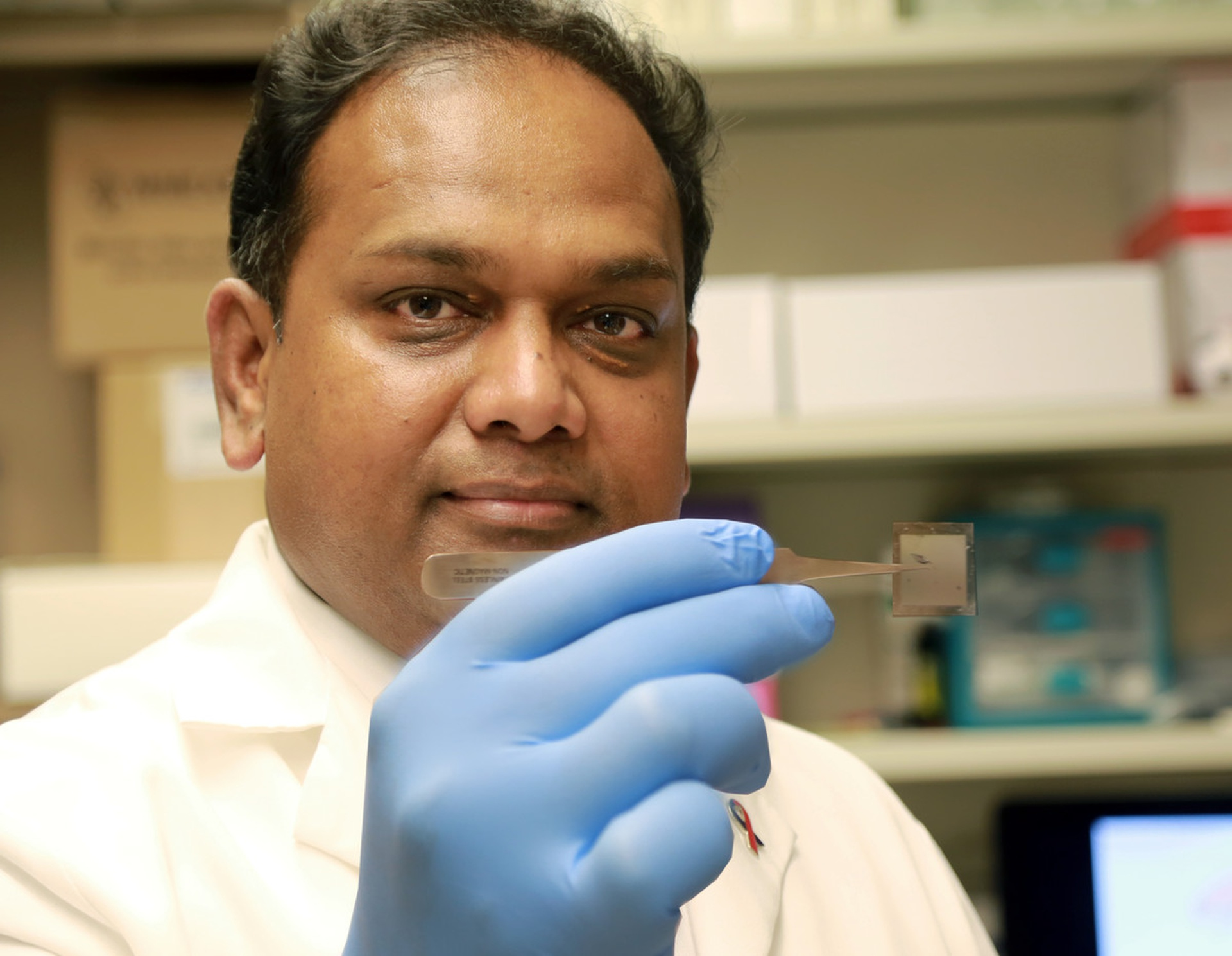 "Researcher Chandan Sen with the nanotechnology-based chip designed to deliver biological ""cargo"" for cell conversion. Image: The Ohio State University Wexner Medical Center"