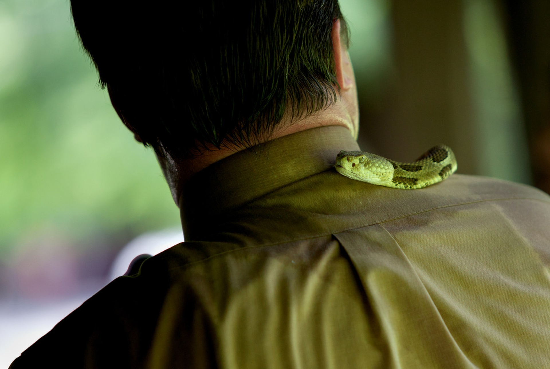 Pastor Mack Wolford's rattlesnake slithers around his neck during an outdoor service in May 2011. (Photo: Lauren Pond)