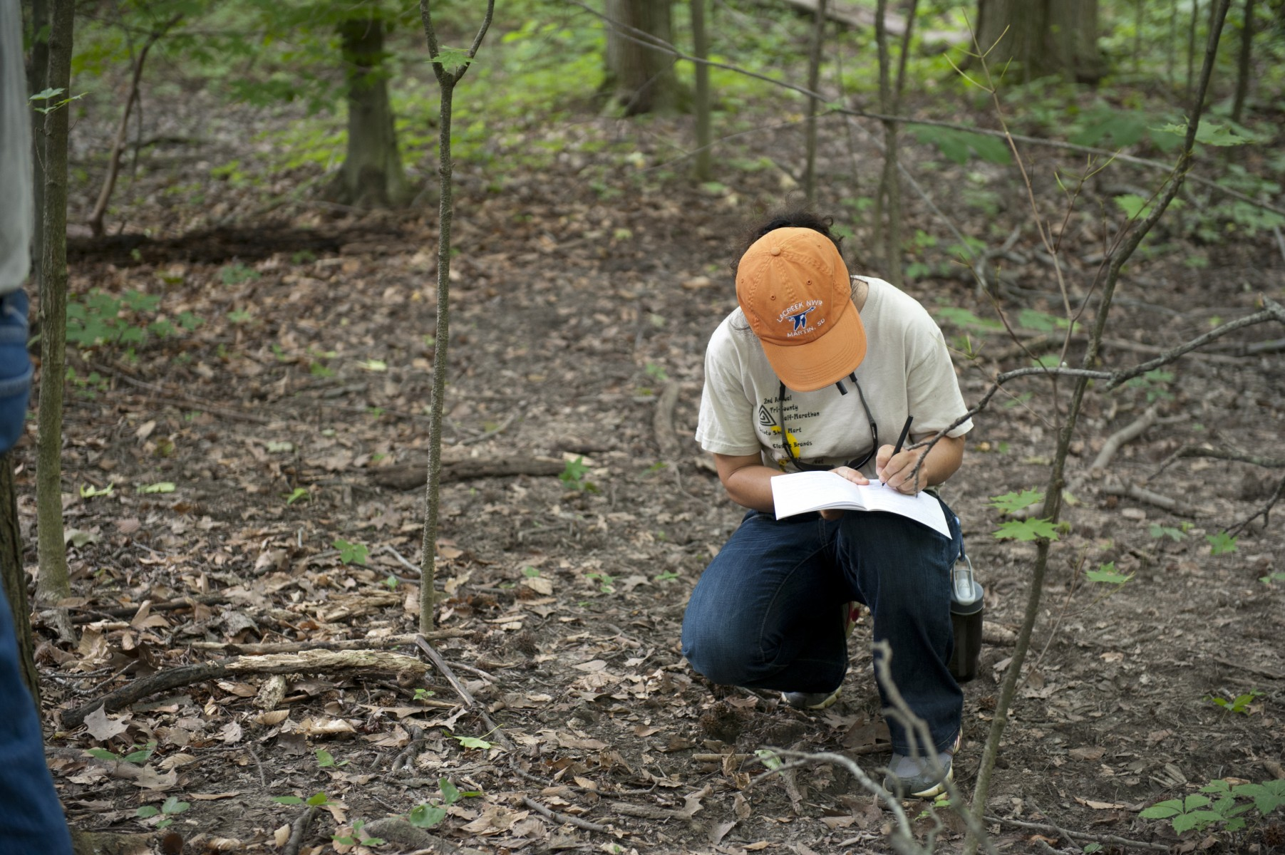 Among Extension's many programs is a tree-identification seminar led by forestry experts.