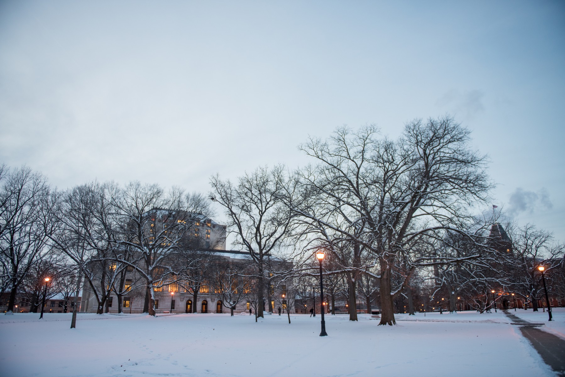 A winter evening on the Oval