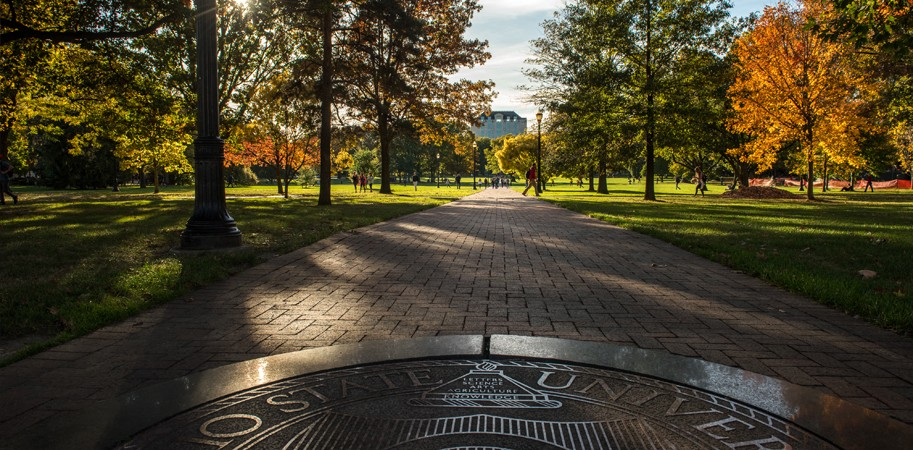 Ohio State University campus long walk