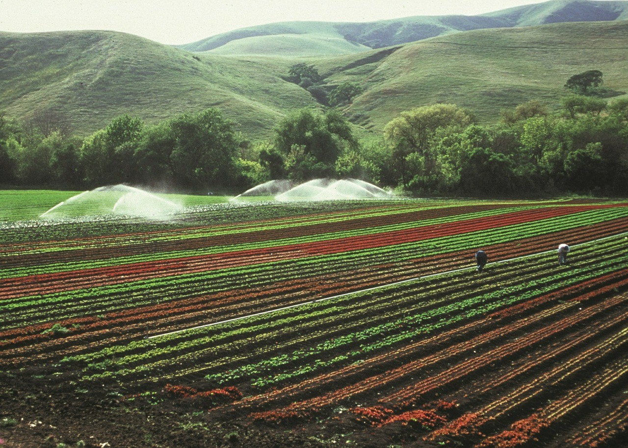 Climate change will pose problems for some farmers who irrigate their crops.
