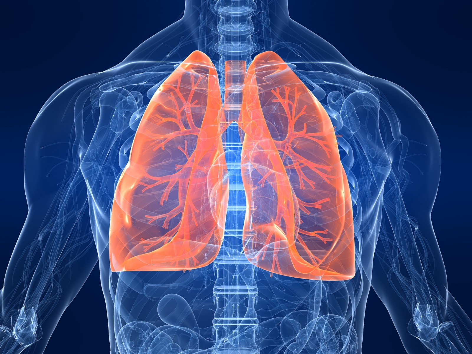 Lung tissue damaged by inflammation is deadly because it allows fluid and cells to build up in airways, preventing the lungs from absorbing oxygen.