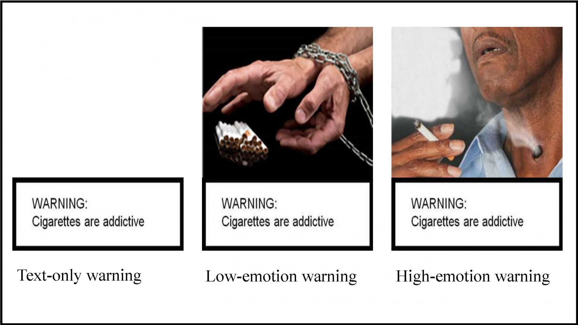 Smokers remember graphic warning labels