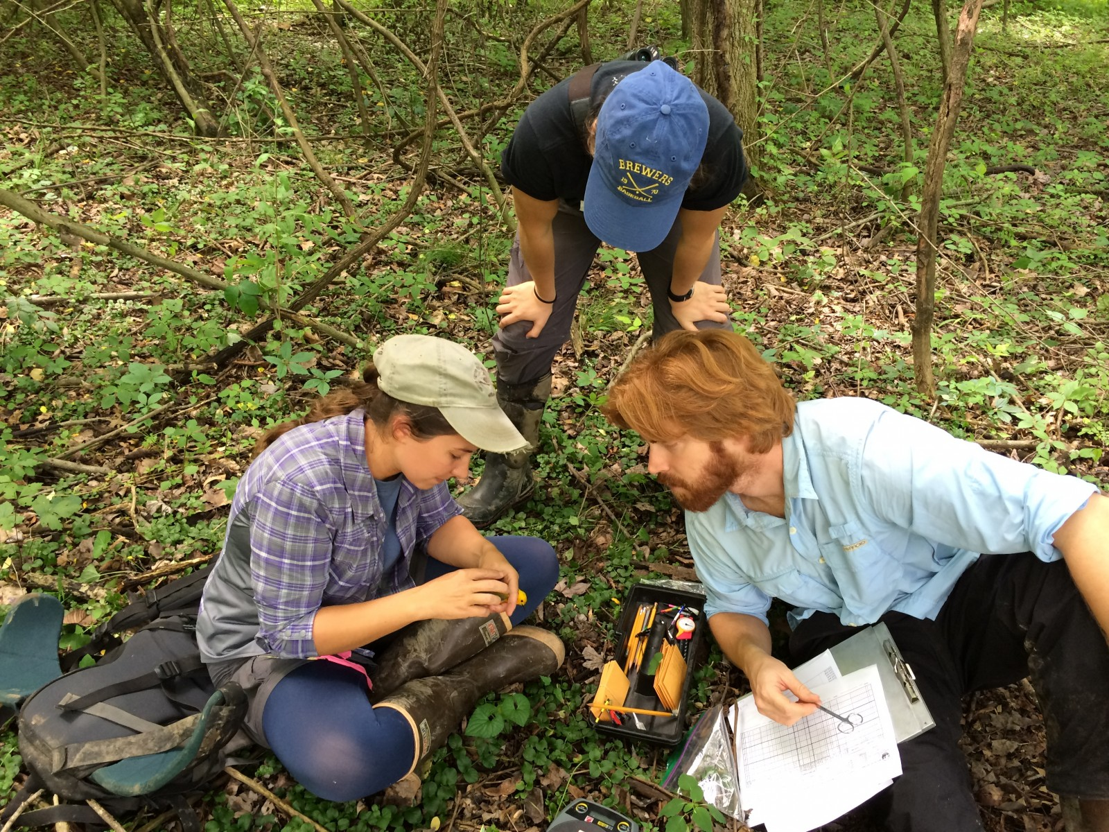 Student researchers (l to r) Liz Ames, Alicia Brunner and Jay Wright with a Prothonotary Warbler tagged for the study. (Photo: Christopher Tonra)