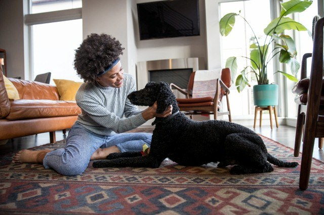 Nationwide earns Human-Animal Bond Certification