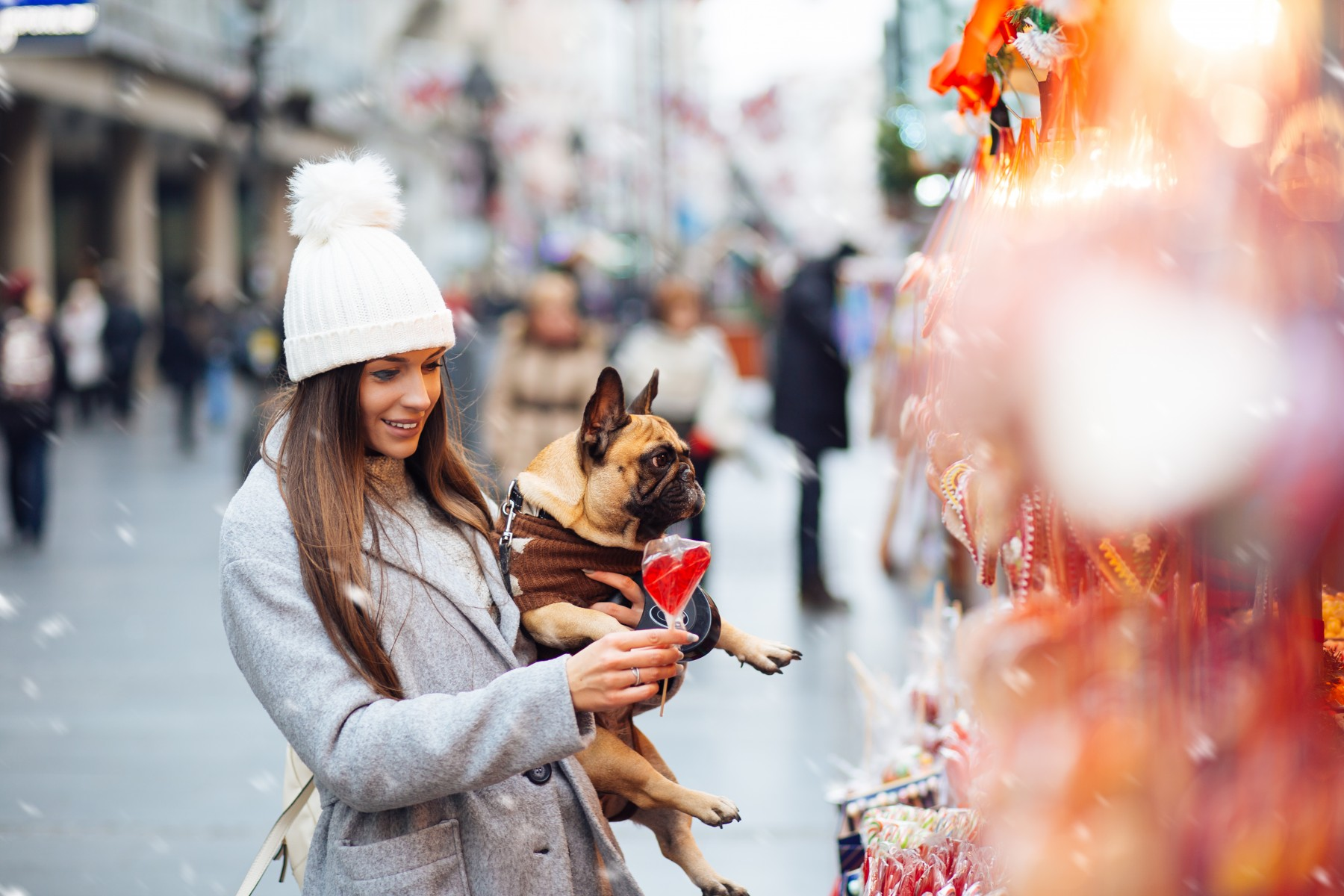 Christmas Market for Dogs