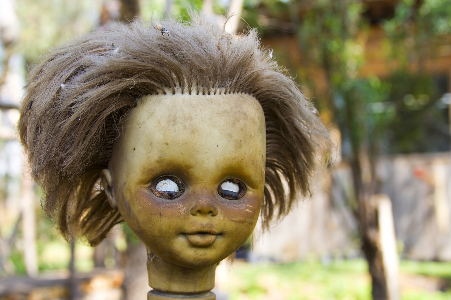 The Island of the Dolls in the Xochimilco´s lagoon