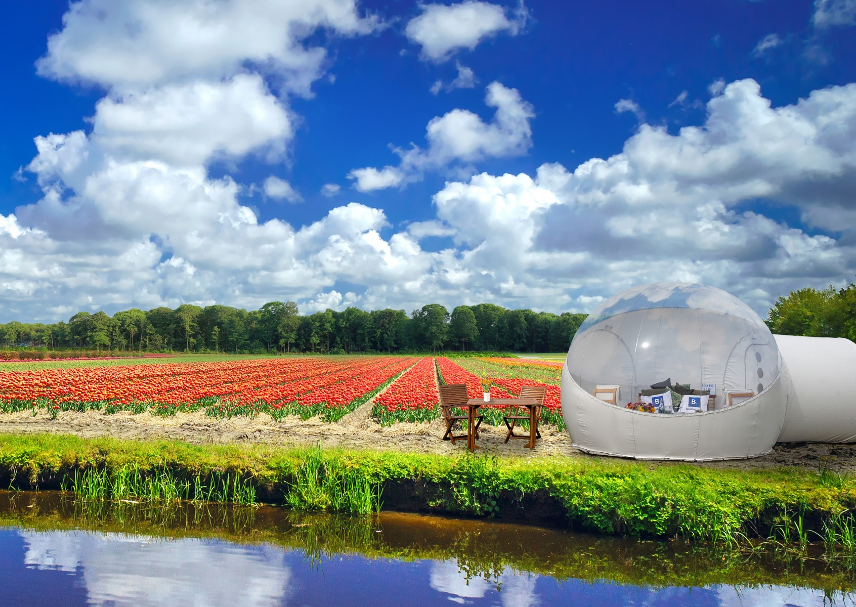 The Tulip Pod at Keukenhof - exterior