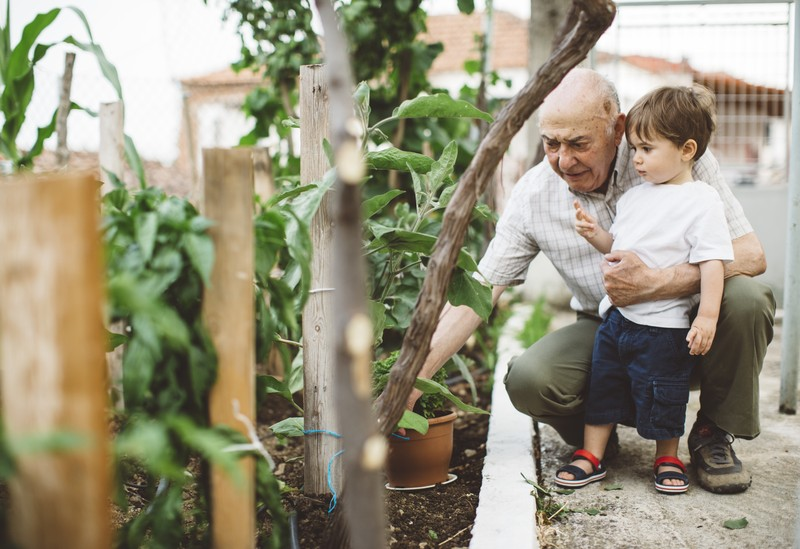 Grandfather and his grandson gardening